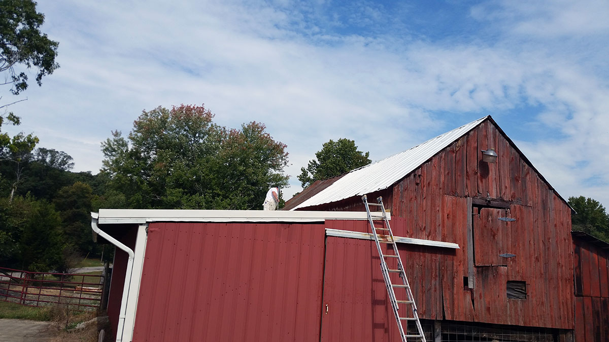 Maintenance repair painting of metal barn roof new for Barn house indiana